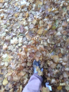 Walking in the leaves.