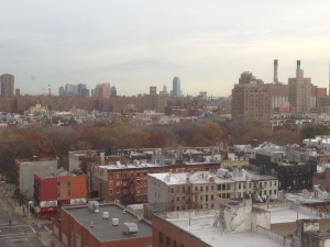 Tomkins Square Park from above.