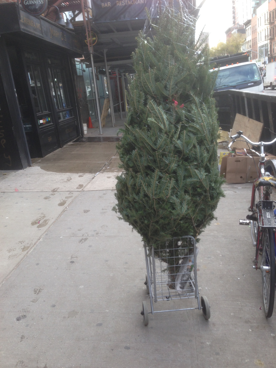 Tree in a cart